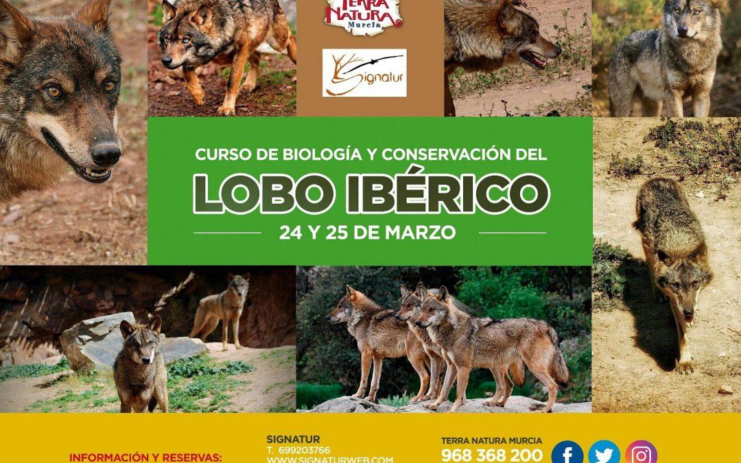 Curso sobre biología y conservación de LOBO IBÉRICO