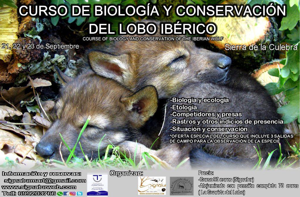 Curso Conservación del Lobo Ibérico