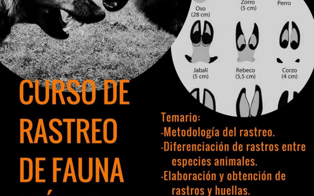 Curso de Rastreo de Fauna Ibérica