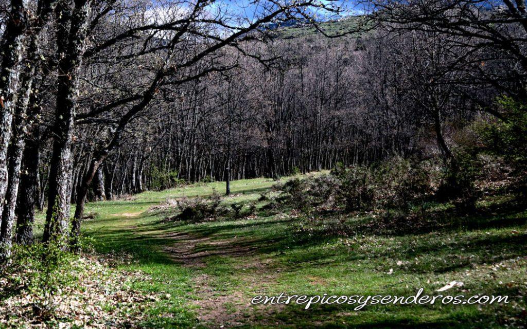 La Hiruela. Antiguo camino hacia El Cardoso de la Sierra